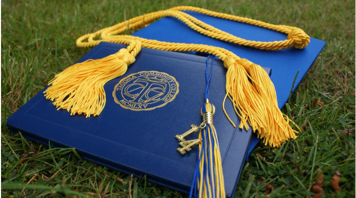 dental diploma and tassel on grass field